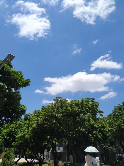 自习室外的天空